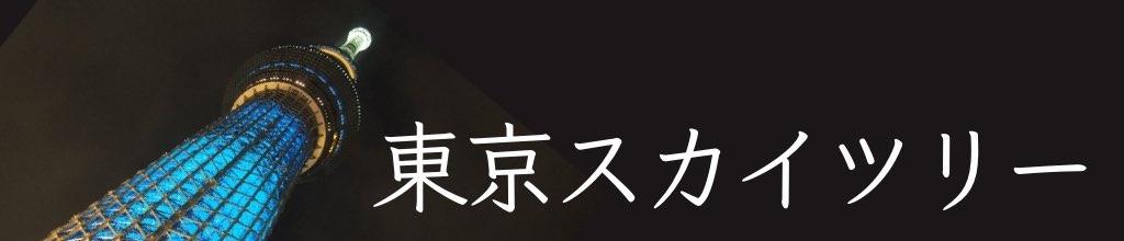 療育手帳と東京スカイツリー