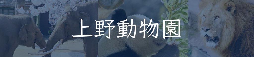 療育手帳と上野動物園