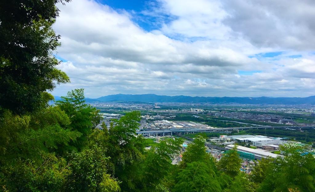 天王山と療育手帳